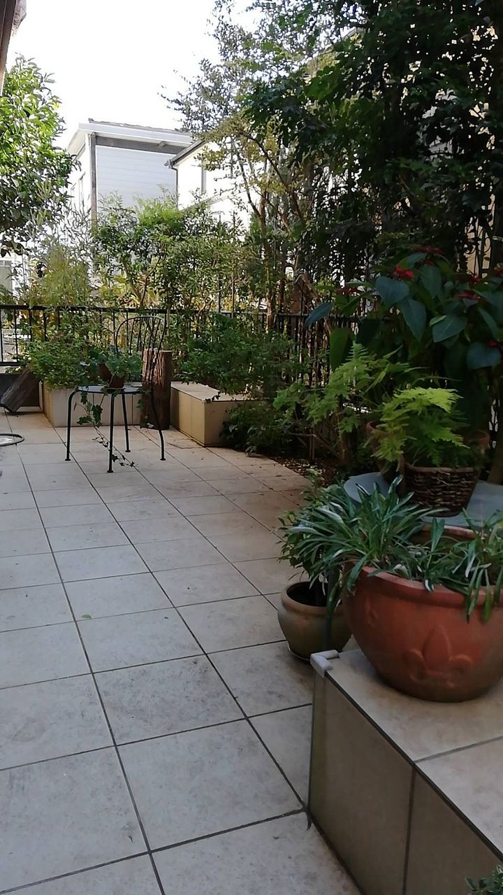 植栽がお楽しみいただけるタイル張りのお庭